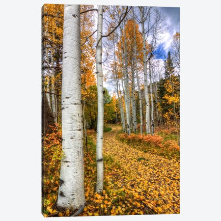 Autumn Stroll Canvas Print #SHL56} by Bill Sherrell Canvas Art