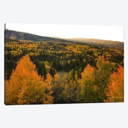 Autumn Sunrise Canvas Print #SHL57} by Bill Sherrell Canvas Artwork
