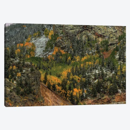 Autumn Wall Canvas Print #SHL61} by Bill Sherrell Canvas Artwork