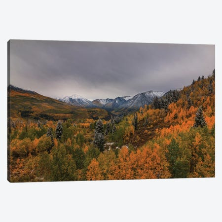 Autumn Wonderland Canvas Print #SHL62} by Bill Sherrell Canvas Wall Art