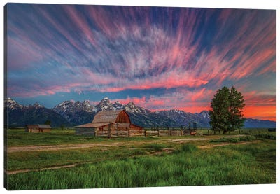 Beneath Teton Glory Canvas Art Print