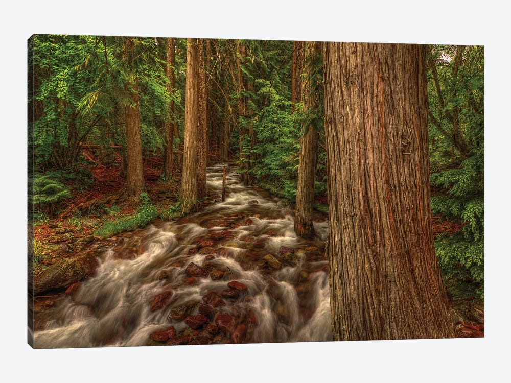 Brook by Bill Sherrell 1-piece Canvas Art Print