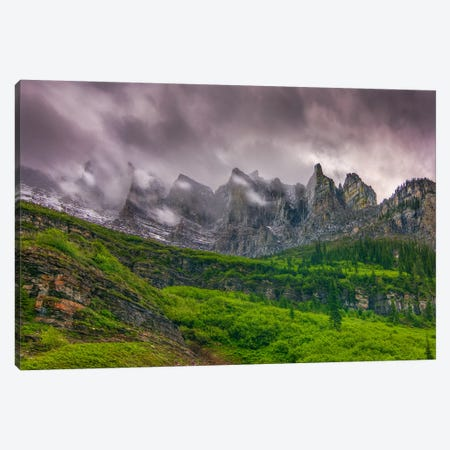 A Majestic Presence Canvas Print #SHL7} by Bill Sherrell Art Print