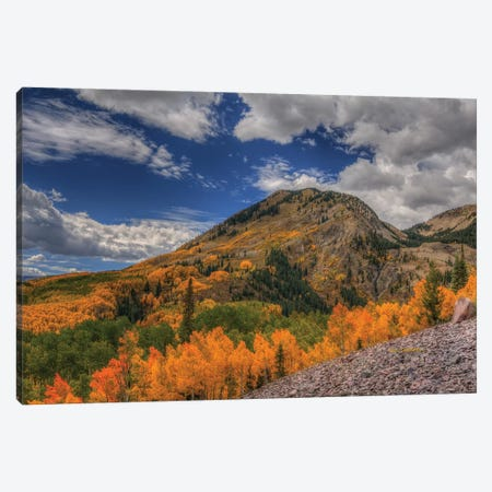 Color In The Clouds Canvas Print #SHL82} by Bill Sherrell Canvas Artwork