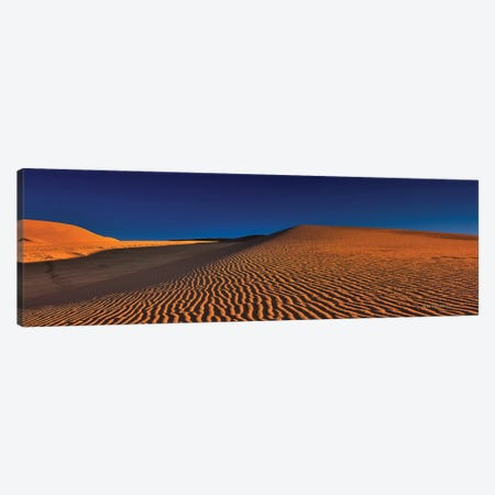 Dune Squiggles Canvas Print #SHL95} by Bill Sherrell Canvas Artwork