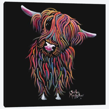 Bolly Canvas Print #SHM10} by Shirley Macarthur Canvas Artwork