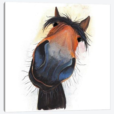 Happy Dave Canvas Print #SHM27} by Shirley Macarthur Canvas Artwork