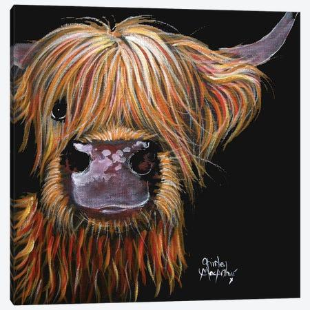Henry Canvas Print #SHM32} by Shirley Macarthur Canvas Art