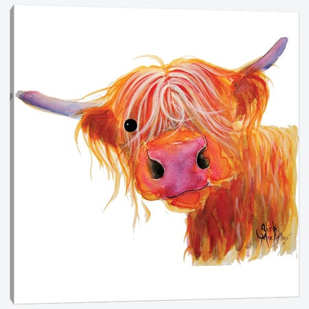 Angus Canvas Print #SHM3} by Shirley Macarthur Canvas Art Print