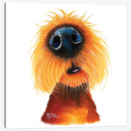 Smells Like Sunshine Canvas Print #SHM53} by Shirley Macarthur Canvas Art