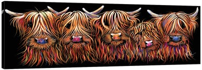 The Hairy Bunch Of Coos Canvas Art Print