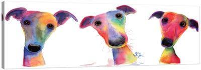 The Wacky Whippets Canvas Art Print