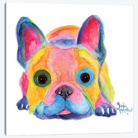 Am I French Canvas Print #SHM75} by Shirley Macarthur Canvas Art Print
