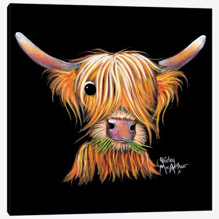 Little Viking II Canvas Print #SHM92} by Shirley Macarthur Canvas Wall Art