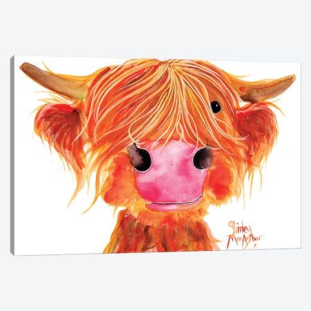 Orange Canvas Print #SHM95} by Shirley Macarthur Canvas Art Print
