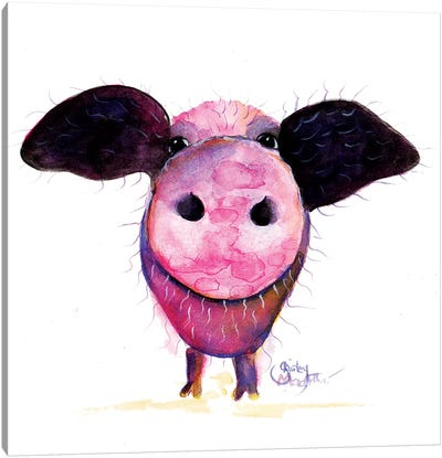 Pigs CAN Fly !! Canvas Art Print