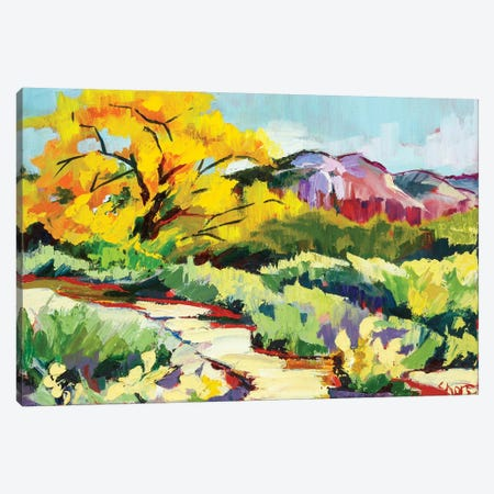 Path To Abiquiú Canvas Print #SHO20} by Maxine Shore Canvas Art Print