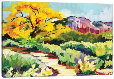 Path To Abiquiú Canvas Art Print