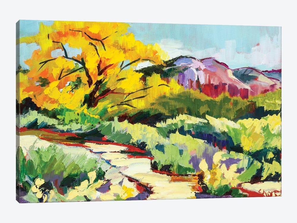 Path To Abiquiú by Maxine Shore 1-piece Canvas Art Print