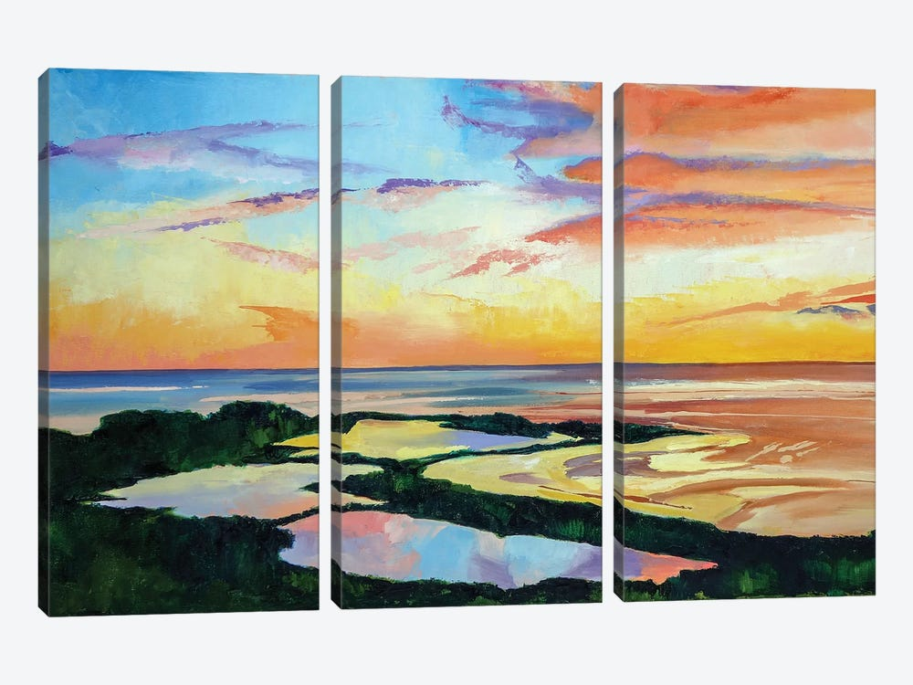 Ocean Sunset by Maxine Shore 3-piece Canvas Artwork