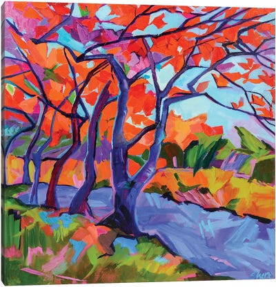 Leaves Of Autumn Canvas Art Print
