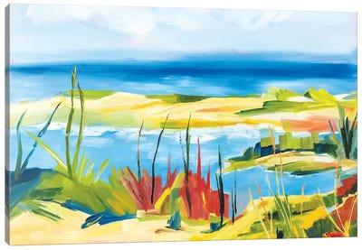 Wellfleet Beach Canvas Art Print