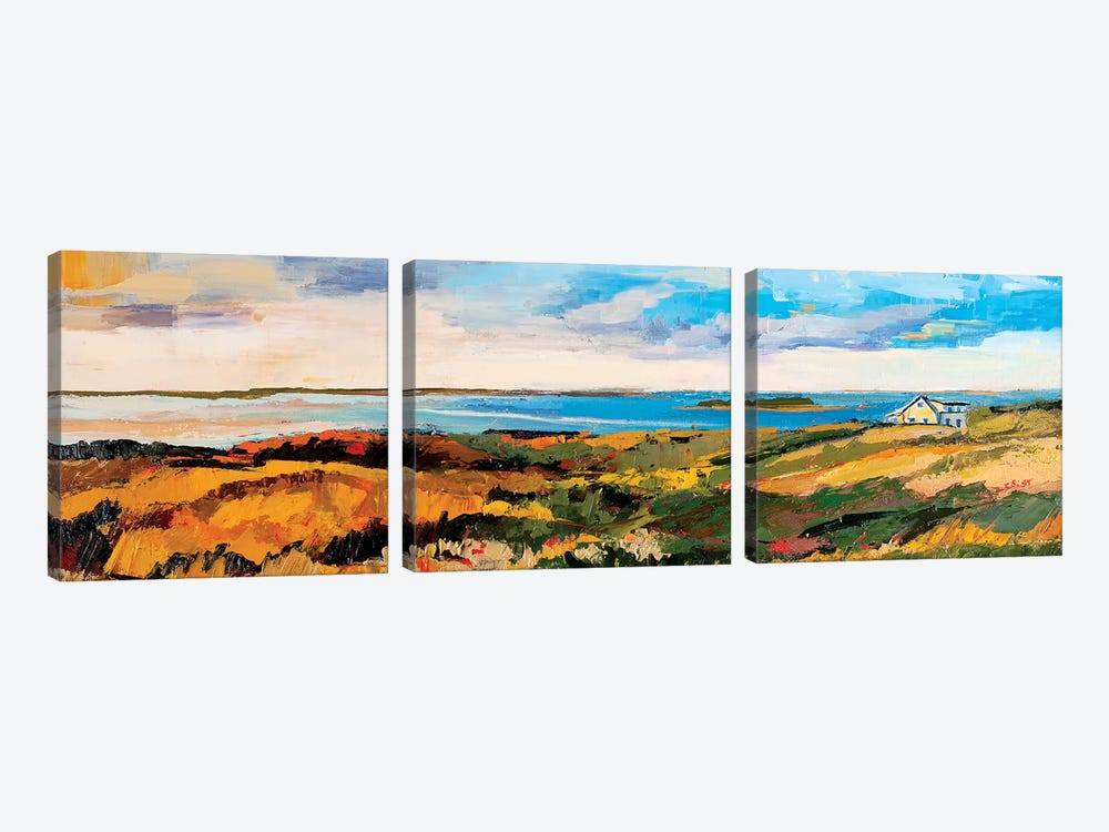 Cape Cod Vista by Maxine Shore 3-piece Canvas Print