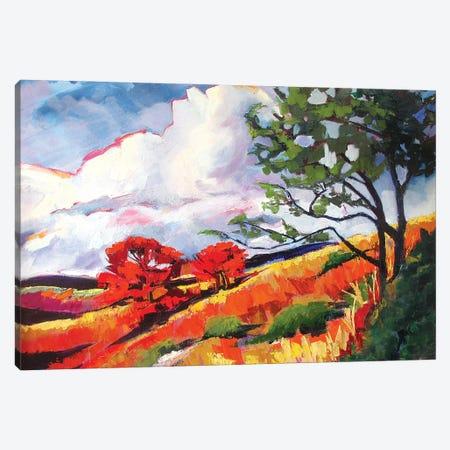 Sonoma Landscape Canvas Print #SHO58} by Maxine Shore Canvas Artwork