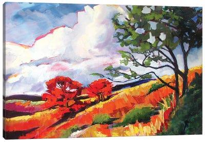 Sonoma Landscape Canvas Art Print
