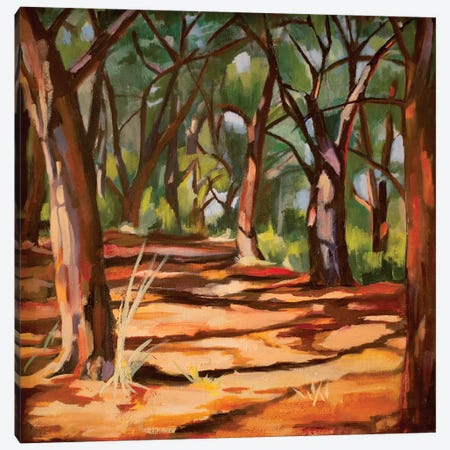 Cape Cod Woods Canvas Print #SHO5} by Maxine Shore Canvas Artwork