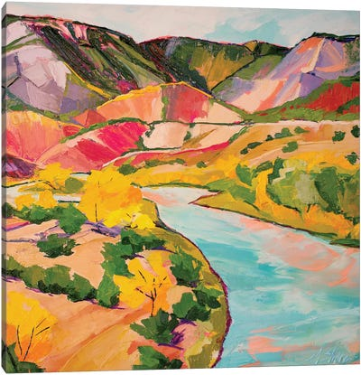 Chama River Canvas Art Print