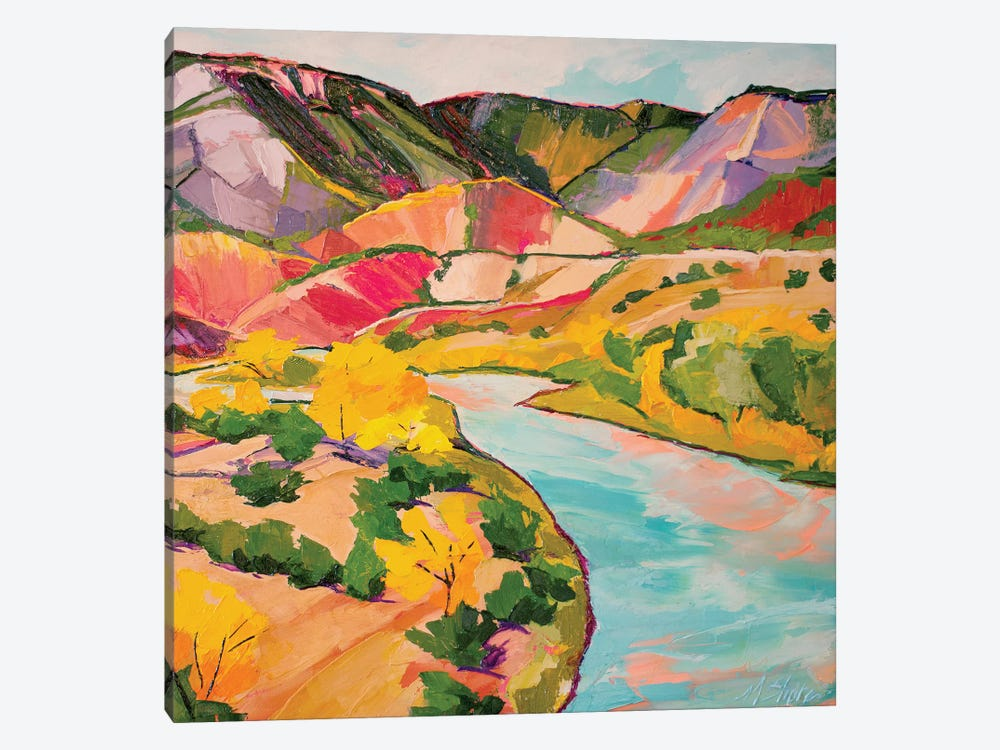 Chama River by Maxine Shore 1-piece Art Print