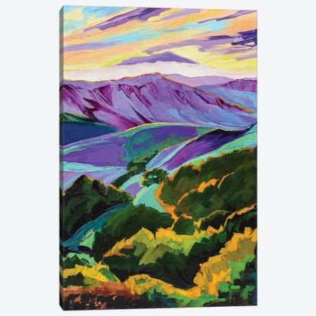 Purple Mountains Majesty Canvas Print #SHO78} by Maxine Shore Canvas Wall Art