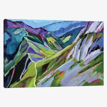 Alpine Trail Canvas Print #SHO79} by Maxine Shore Canvas Art