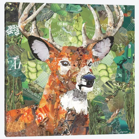 Oh Deer Canvas Print #SHP22} by Deborah Shapiro Canvas Wall Art