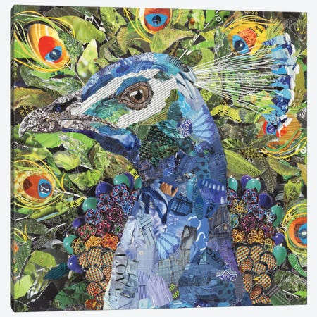 Peacock 3-Piece Canvas #SHP23} by Deborah Shapiro Canvas Wall Art
