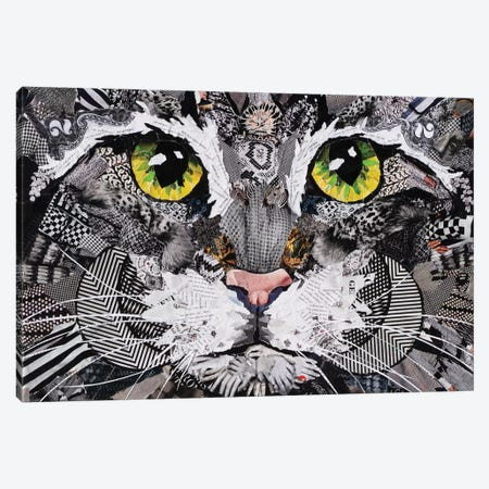 Cat II Canvas Print #SHP4} by Deborah Shapiro Canvas Art