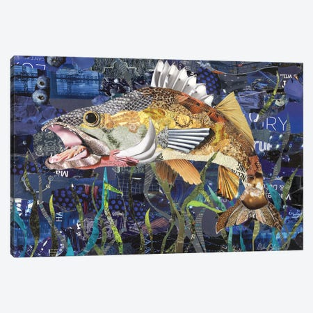 Walleye Canvas Print #SHP51} by Deborah Shapiro Canvas Print