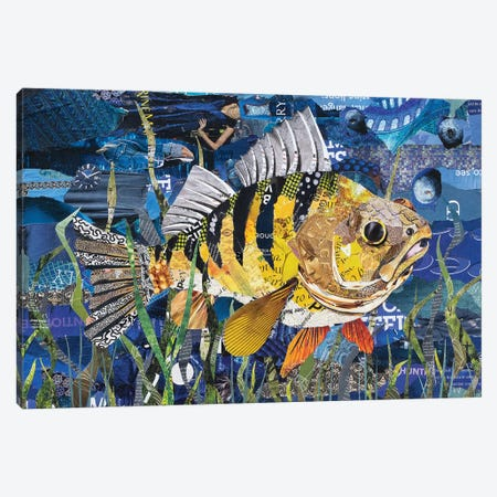 Yellow Perch Canvas Print #SHP52} by Deborah Shapiro Canvas Art Print