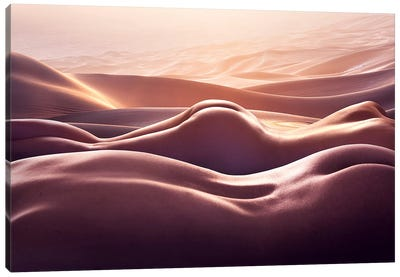 Desert I Canvas Art Print
