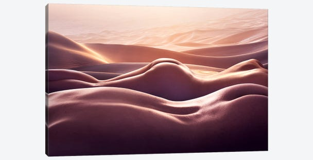 Desert I Canvas Print #SHY1} by Shanyewuyu Canvas Art