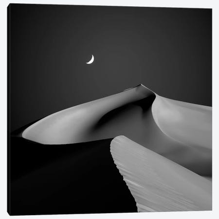 Desert II Canvas Print #SHY2} by Shanyewuyu Canvas Artwork