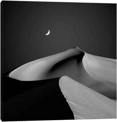 Desert II Canvas Art Print