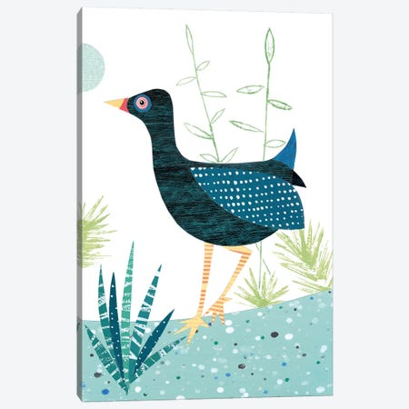 Moorhen Canvas Print #SIH109} by Simon Hart Canvas Print