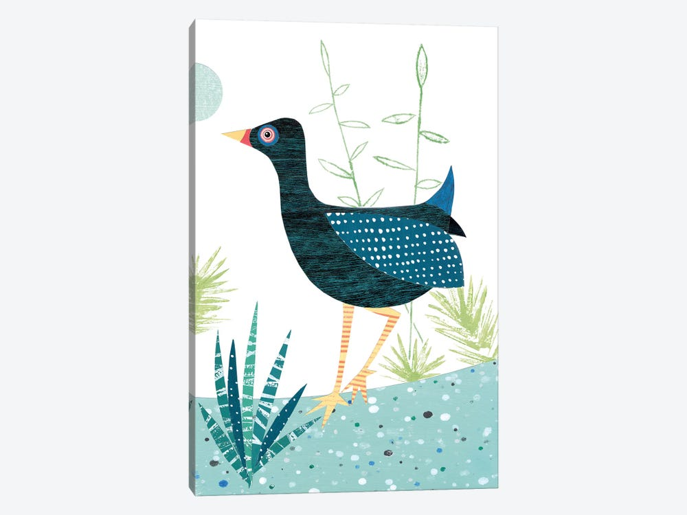 Moorhen by Simon Hart 1-piece Canvas Print