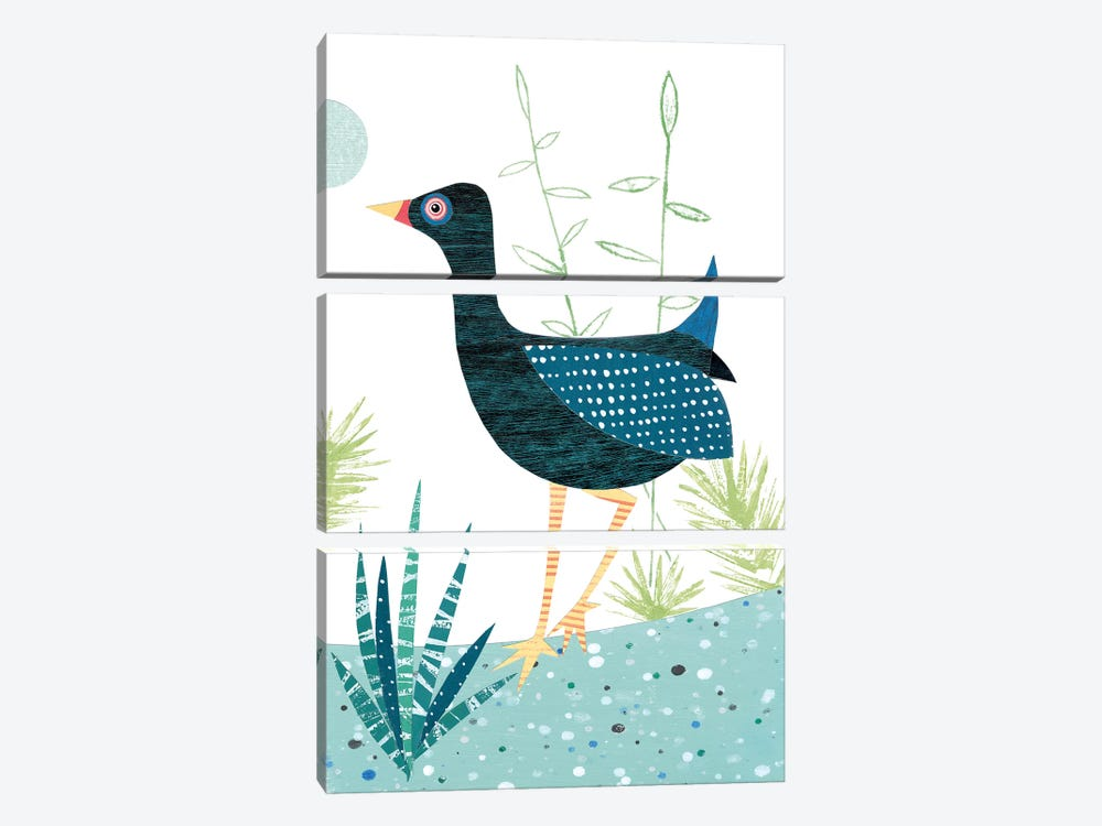 Moorhen by Simon Hart 3-piece Art Print
