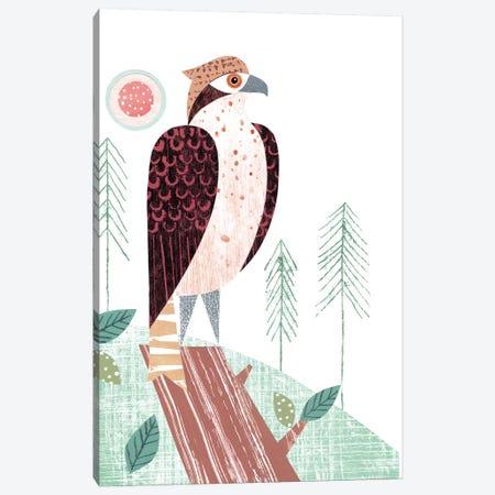 Osprey Canvas Print #SIH111} by Simon Hart Canvas Art