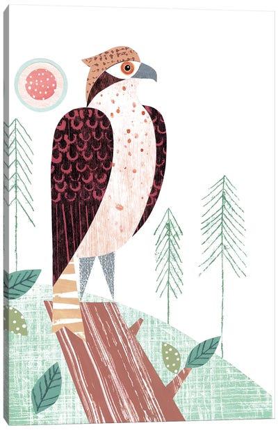 Osprey Canvas Art Print