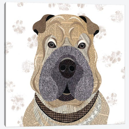 Shar Pei Canvas Print #SIH126} by Simon Hart Canvas Wall Art