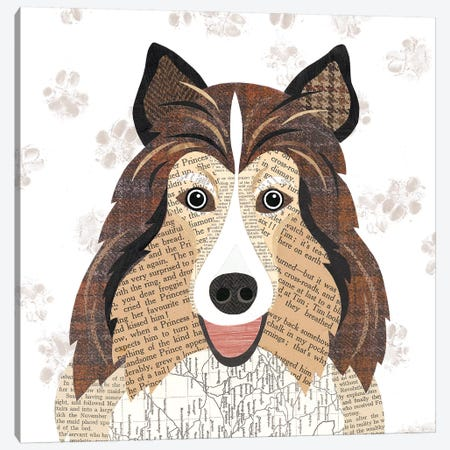 Shetland Sheepdog Canvas Print #SIH127} by Simon Hart Canvas Wall Art